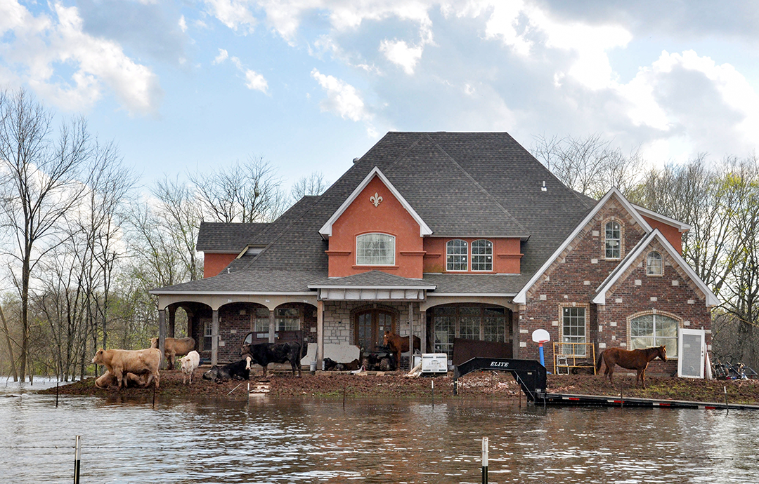 flood help