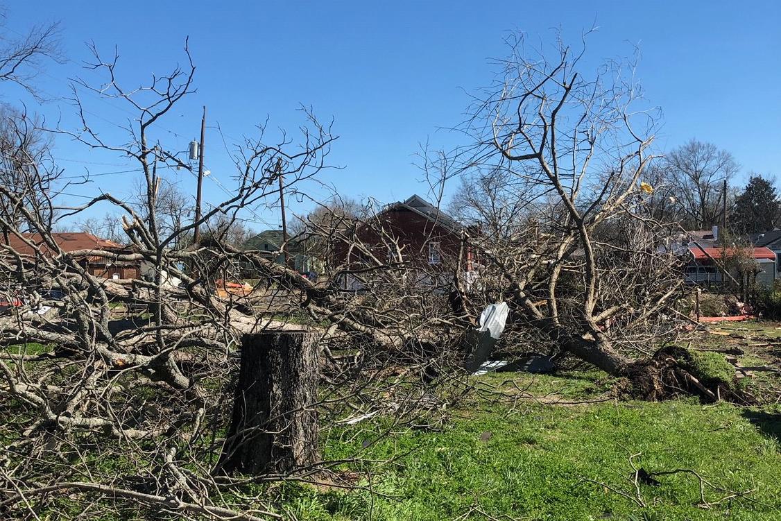 Columbus, MS tornado damage
